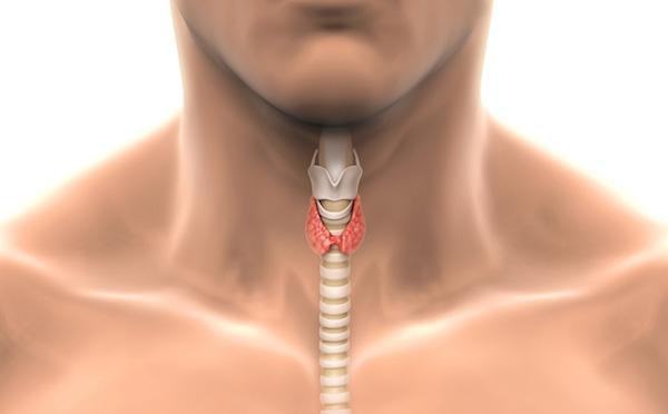 tiroid-bezi-hastaliklari
